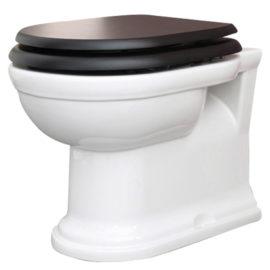 Klassisches Wand WC